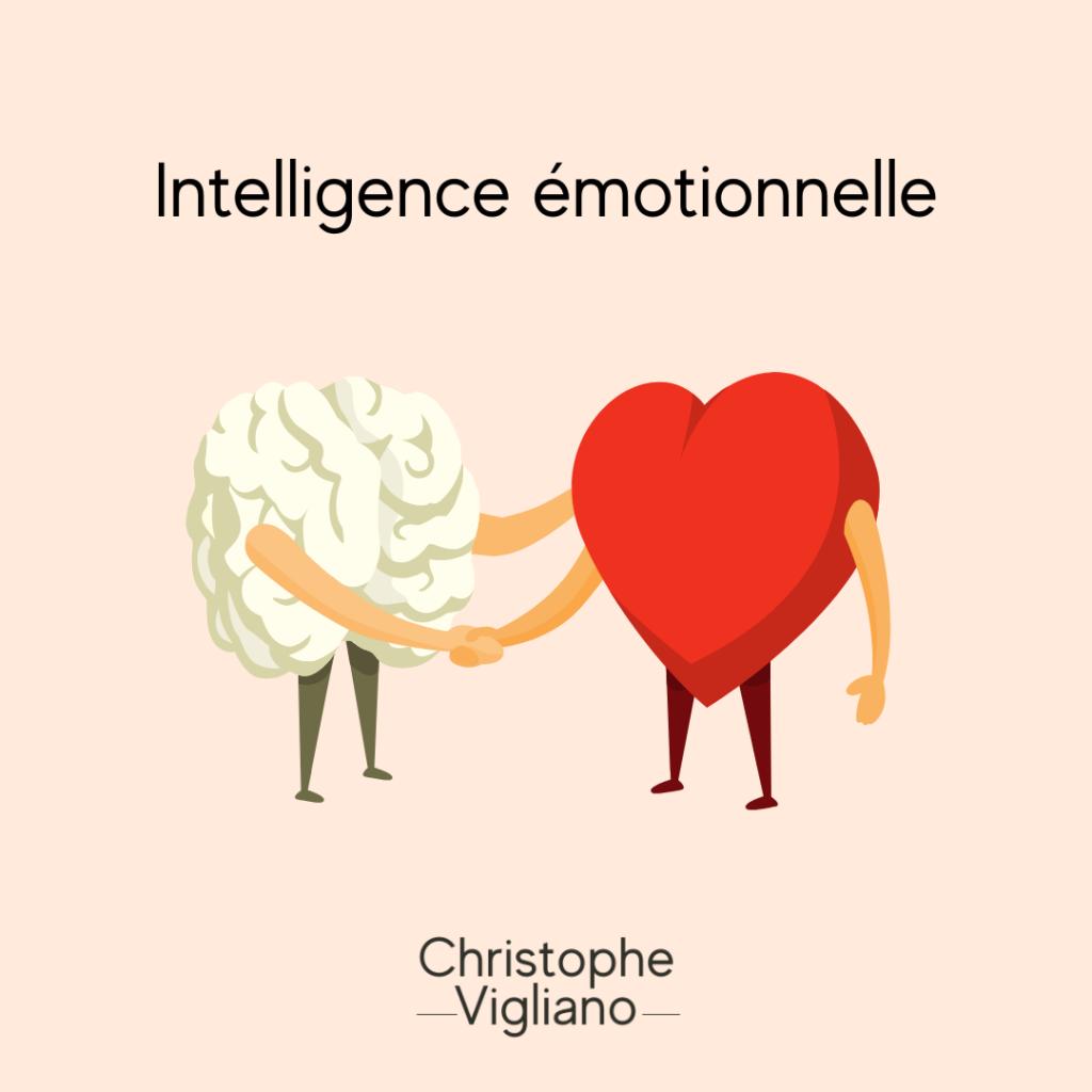Intelligence émotionnelle Christophe Vigliano